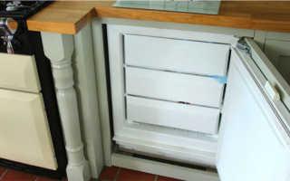 Можно ли поставить морозильную камеру и холодильник в кладовку