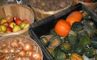 Что хранят в погребе: подготовка помещения, особенности закладки и хранения различных культур