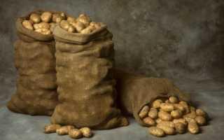 При какой температуре хранить картофель — рекомендации