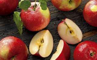 Хранение яблок на зиму в погребе: подготовка урожая и отбор фруктов