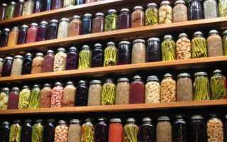 Из чего сделать погреб для хранения овощей (овощехранилище)