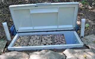 Мини-погреб на даче: как сделать своими руками