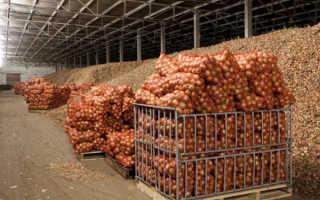 Санитарные нормы для овощехранилищ: нормативы СанПин
