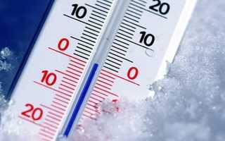 Оптимальная температура в погребе — способы поддержания