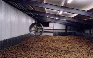 Хранилище для картофеля: правила хранения картошки
