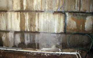 Что делать с сыростью в подвале — правильная борьба с влагой