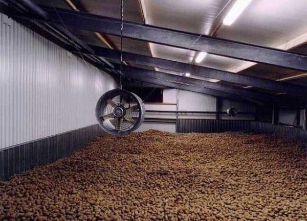 Хранилище для картофеля