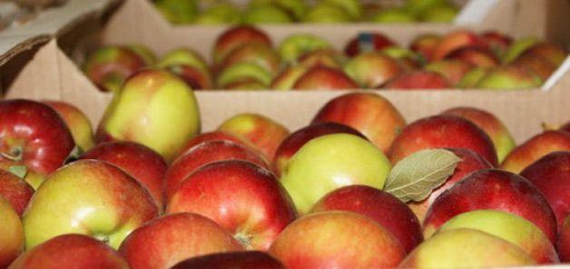 Ящики с фруктами