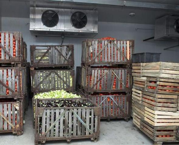 Овощехранилище в частном доме