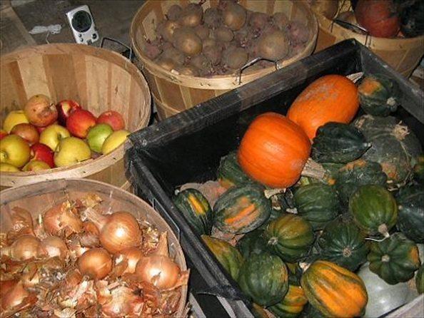 Погреб отлично подходит для хранения самых различных овощей