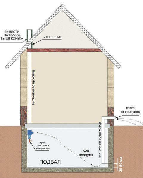 Схема естественного круговорота воздуха в подземном помещении дома